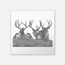 "Monster buck deer Square Sticker 3"" x 3"""