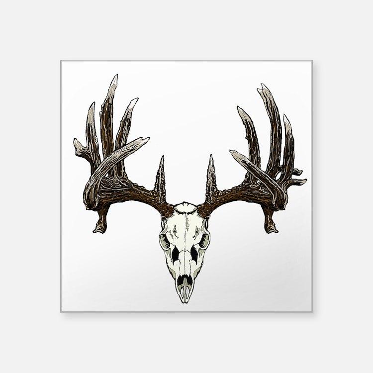 """whitetail skull Square Sticker 3"""" x 3"""""""
