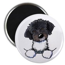 Pocket Havanese Magnet