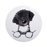 Havanese Ornaments