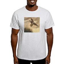 Kaleidoscope Ash Grey T-Shirt