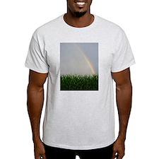 rainbow8.jpg T-Shirt
