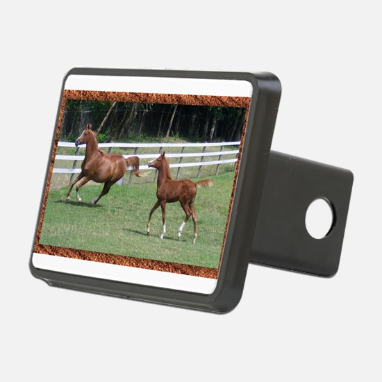 Mare and foal framed.jpg Hitch Cover