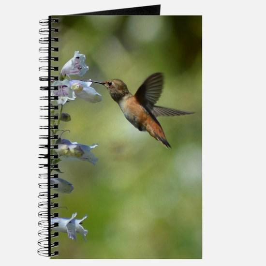 Hummingbird 4851 - Journal