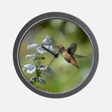 Hummingbird 4851 - Wall Clock