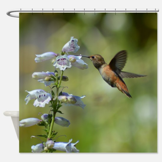 Hummingbird 4851 - Shower Curtain