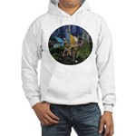 FairyDance Hooded Sweatshirt
