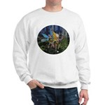 FairyDance Sweatshirt