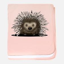 Porcupine baby blanket