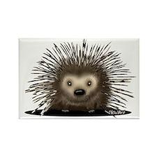 Porcupine Rectangle Magnet (100 pack)