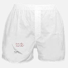 Better Than Snail Mail Boxer Shorts