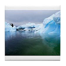 Antarctica Water! Iceberg Tile Coaster