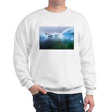 Antarctica Water! Iceberg Sweatshirt