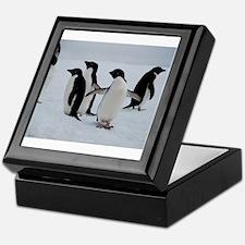 Adelie Penguin in Antarctica Keepsake Box