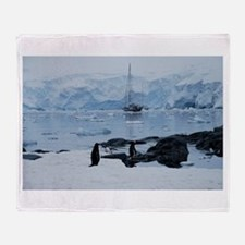 Gentoo Penguin at Port Lockroy Throw Blanket