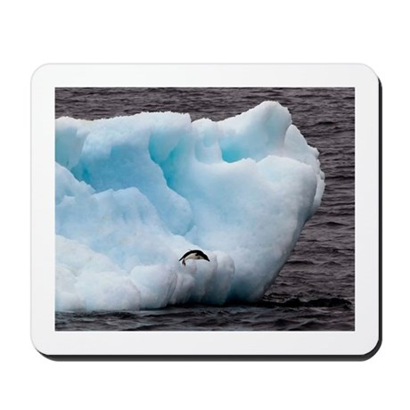 Adelie Penguin on Iceberg Mousepad