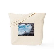 Adelie Penguin on Iceberg Tote Bag