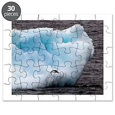 Adelie Penguin on Iceberg Puzzle