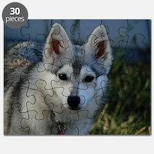 Alaskan Klee Kai Puppy Portrait Puzzle