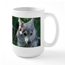 Alaskan Klee Kai hiding in grass Mug