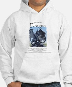 Advice from a Dragon Hoodie