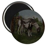 Painted Horse and Foal Magnet