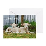 Thank You Cards ~ Buddy Lambs Greeting Card