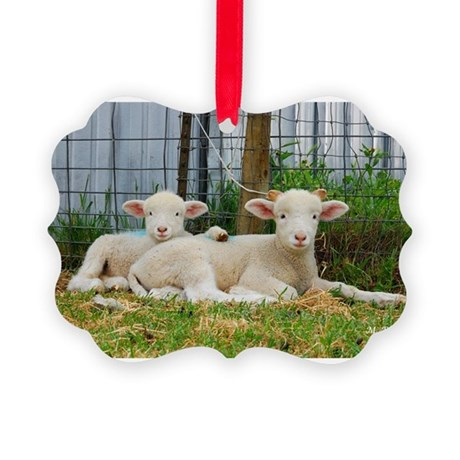 Buddy Lambs- Picture Ornament