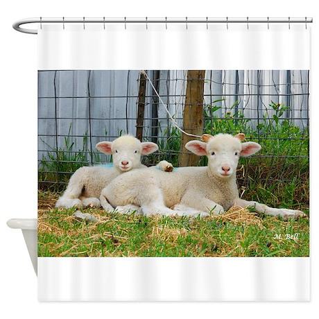 Buddy Lambs-Shower Curtain