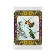 Rufous Hummingbirds Rectangle Magnet (10 pack)