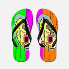 ff biology teacher 2.PNG Flip Flops