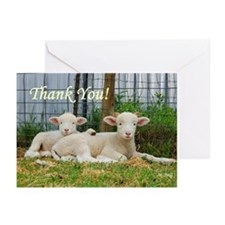 Thank You ~ Buddy Lambs (20 cards)