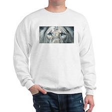 The Fallen Arises Sweatshirt