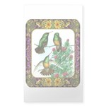 Buff Bellied Hummingbirds Sticker (Rectangle 10 pk