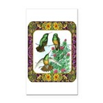 Buff Bellied Hummingbirds Rectangle Car Magnet