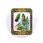 "Buff Bellied Hummingbirds 3.5"" Button"