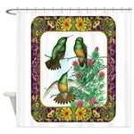 Buff Bellied Hummingbirds Shower Curtain
