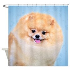 Funny Pomeranian Shower Curtain