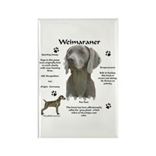 Weim 3 Rectangle Magnet