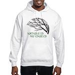 10x10_apparelNatureChurch.png Hooded Sweatshirt