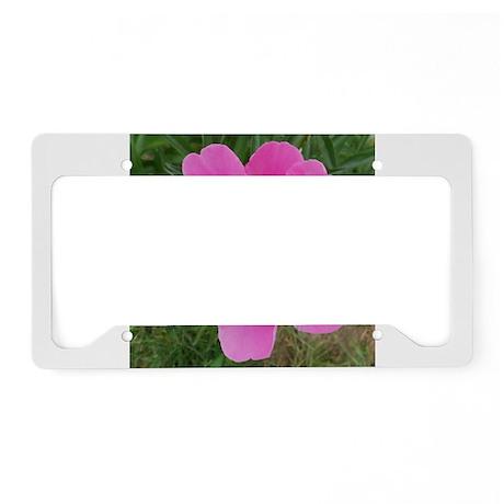 Pink Peonie License Plate Holder