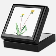 Unique Dandelion Keepsake Box