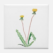 Cute Dandelion Tile Coaster
