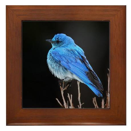 Mountain Blue Bird Framed Tile