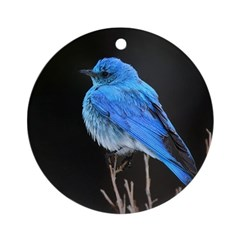 Mountain Blue Bird Ornament (Round)