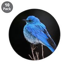 """Mountain Blue Bird 3.5"""" Button (10 pack)"""