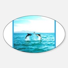 3 Jumping Dolphins Square Baby Blue Border Decal