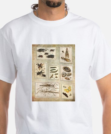 Illustrations T-Shirt