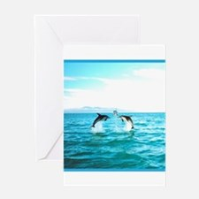 3 Jumping Dolphins Square Baby Blue Border Greetin