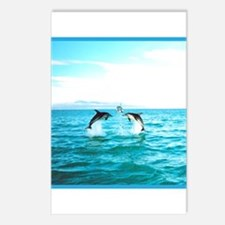3 Jumping Dolphins Square Baby Blue Border Postcar